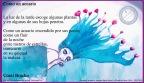 Las postales de Mónica: Coral Bracho