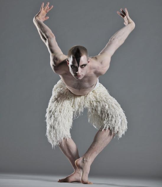 swan-lake-3d-3
