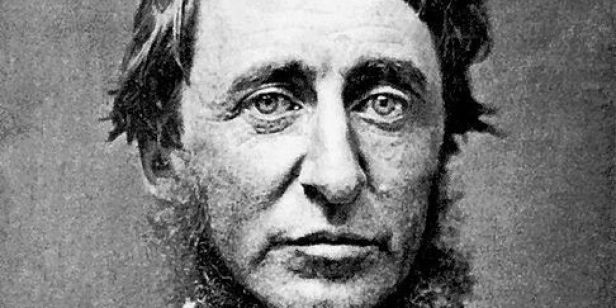 o-THOREAU-FACTS-facebook